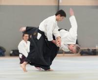 aikido_2012_moers_0766small.jpg