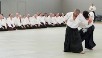 aikido_2012_moers_0878small.jpg